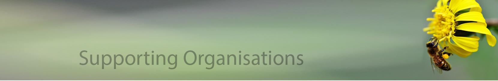organizational behaviour case study zain nigeria